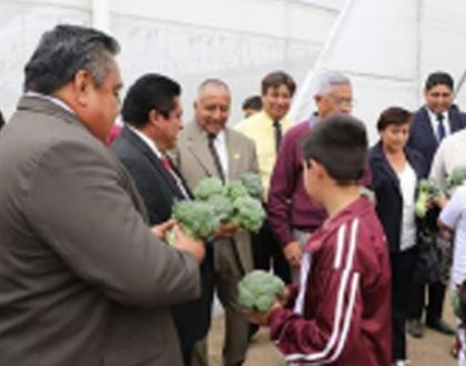 """Editar Noticias y eventos México: """"Mi Escuela Produce"""" cosecha frutos"""
