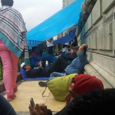 STEG acampada