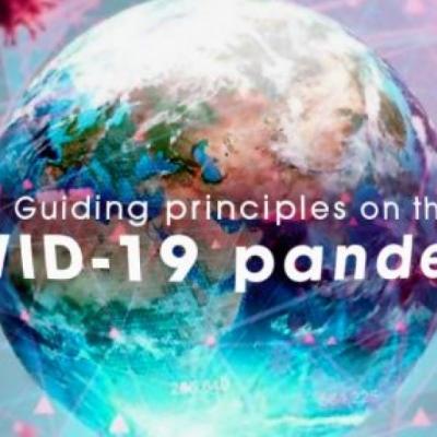 Principios rectores de la IE ante pandemia del COVID-19